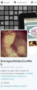 Bretagne-rédaction-web est sur twitter : suivez @BretagneWeb
