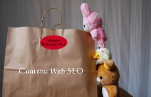 les bases du contenu web seo